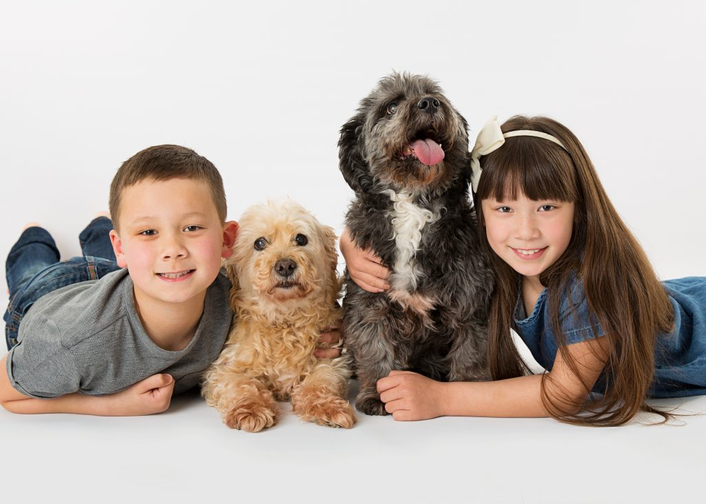 child & pet photographer wirral offley photography