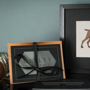 dog photo session gift voucher
