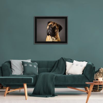classic framed wall art photography
